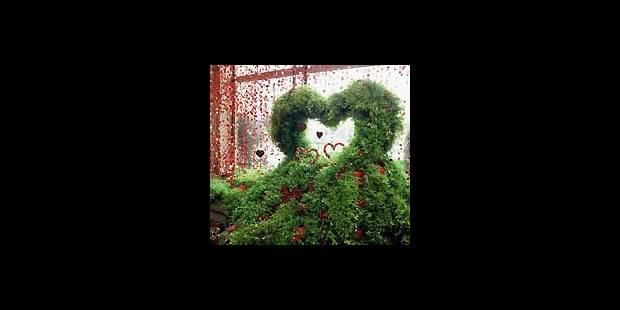 Le «Picasso de l'art floral» arrive à Bruxelles - La Libre