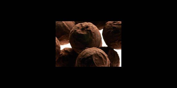 Barry Callebaut tient le cap - La Libre