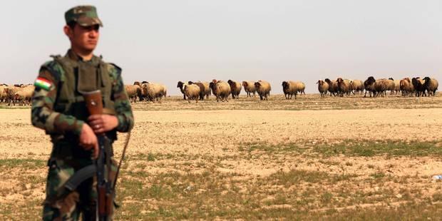 Irak: Washington rapproche ses sauveteurs de pilotes des zones de bombardements - La Libre