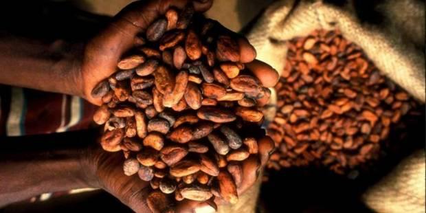 Côte d'Ivoire et Ghana signent un accord contre le travail des enfants - La Libre