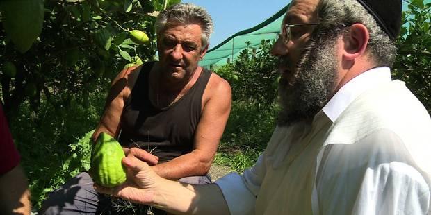 Un pèlerinage de juifs orthodoxes en quête du plus beau cédrat - La Libre