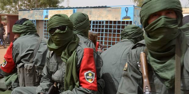 """La paix au Mali sur le """"bon chemin"""", dit Le Drian - La Libre"""