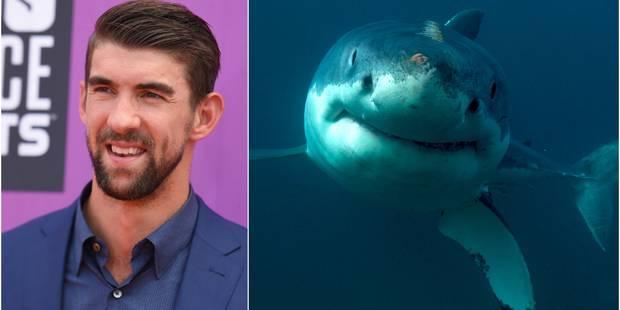 Le nageur Michael Phelps a perdu son duel contre un requin - La Libre