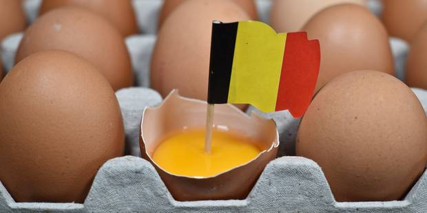 La Wallonie se constitue partie civile dans le scandale du fipronil - La Libre