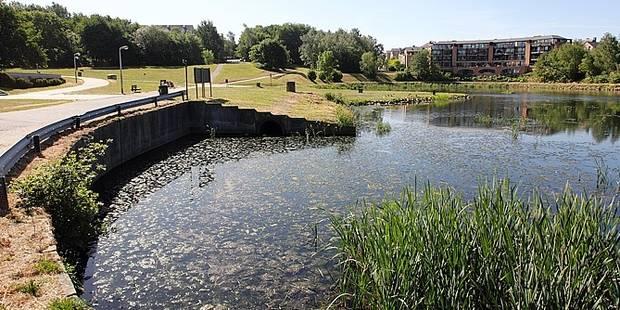 Louvain-la-Neuve, ville propre? - La Libre
