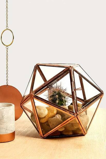 Terrarium étoile, 35 euros chez  Urban Outfitters
