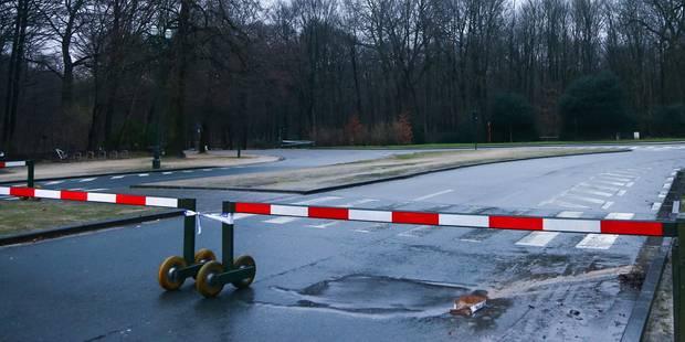 Intempéries à Bruxelles: le Bois de la Cambre rouvert à la circulation - La Libre