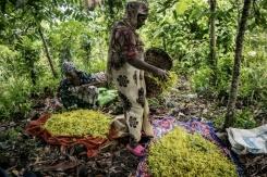 10h28 Les Comores Un Micro Etat Pauvre Dans L Ocean Indien La Libre