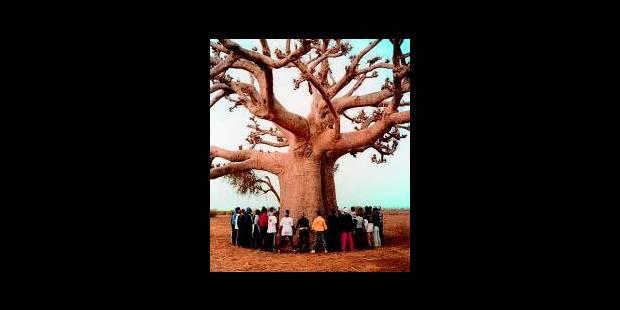 `Africalia´ pour une Afrique qui crée - La Libre