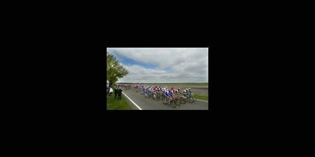 Cipollini traversera la Belgique en rose - La Libre
