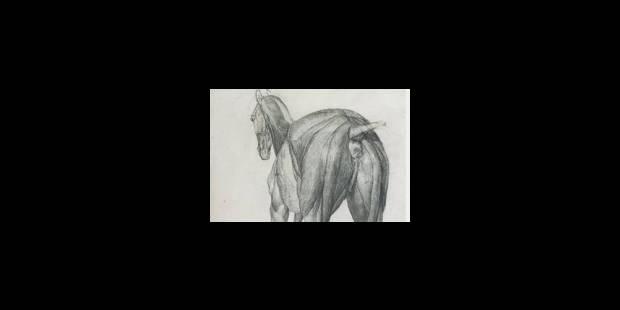 George Stubbs et le cheval - La Libre
