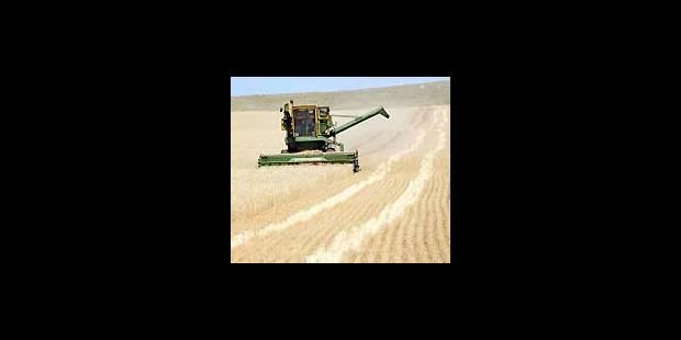 Chute de la production céréalière européenne - La Libre