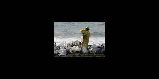 Marée noire: l'état d'urgence déclaré - La Libre