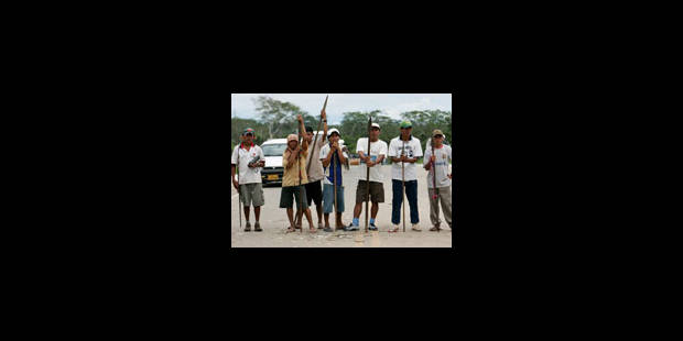 Amazonie : les députés réviseront les décrets