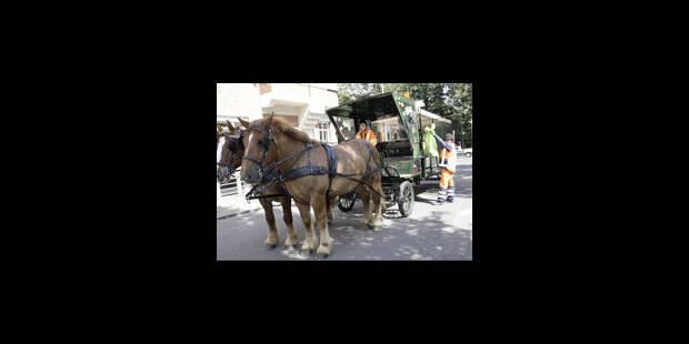 Le cheval a sa place dans la ville - La Libre