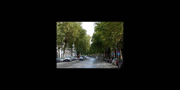 Le parlement bruxellois va débattre de l'avenue du Port