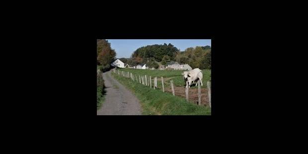 Entretien des voies vertes en vue - La Libre