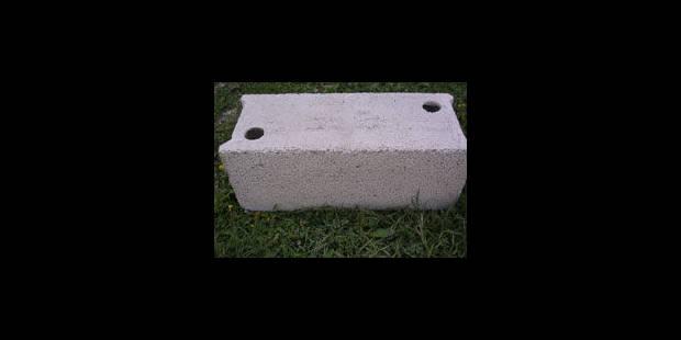La brique, manne des notaires - La Libre