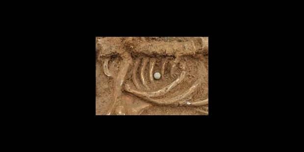 Le soldat mort en 1815 découvert à Waterloo pourrait être anglais