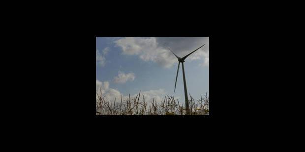 L'électricité a le vent en poupe