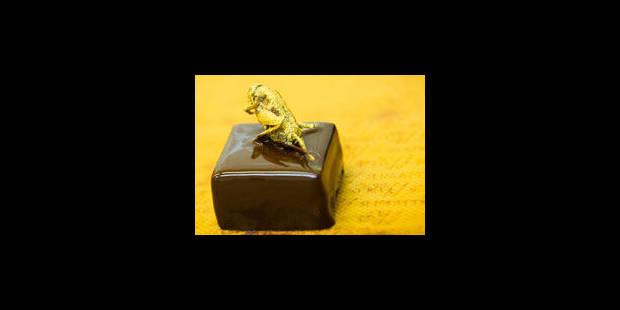 Des chocolats aux insectes
