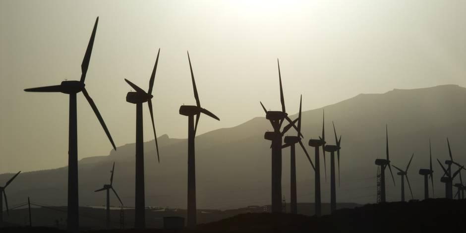 Neuf géants de l'électricité demandent à l'UE de stopper l'aide aux énergies renouvelables