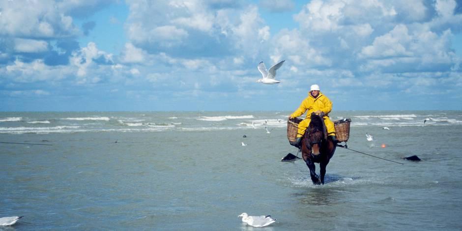Les pêcheurs de crevettes d'Oostduinkerke sur la liste du patrimoine de l'Unesco