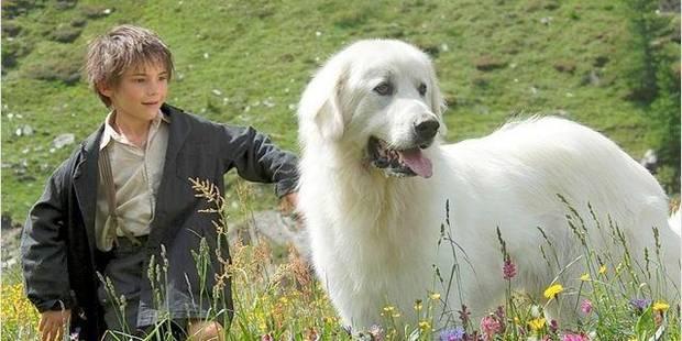 """""""Belle et Sébastien"""", une reprise qui a du chien - La Libre"""