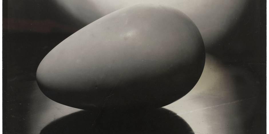 Le mystère fascinant des formes simples - La Libre