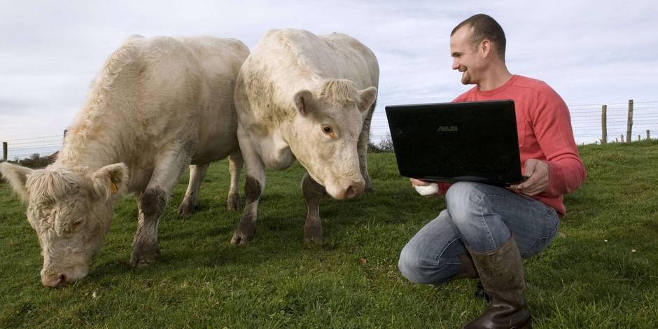site rencontre vache)