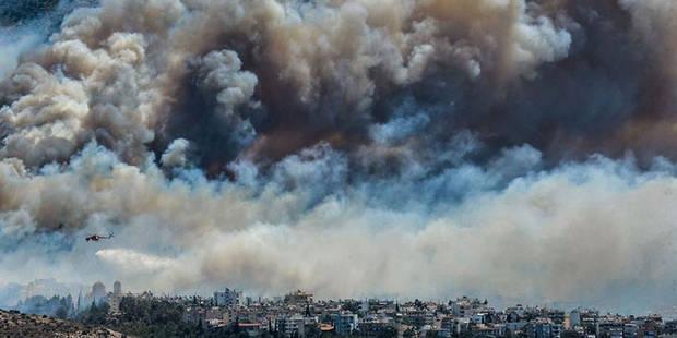 Grèce: feux de forêt spectaculaires près d'Athènes et en Péloponnèse - La Libre