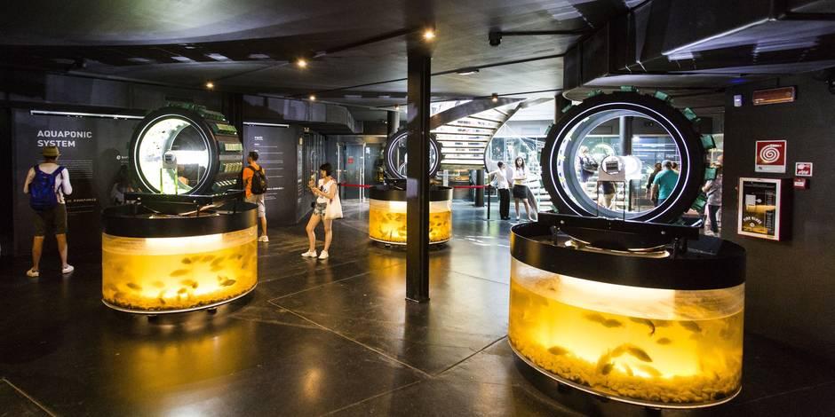 """Milan 2015: le pavillon belge reçoit un prix """"éco-durable"""""""