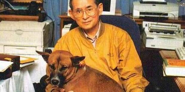 En Thaïlande, la mort de la chienne du roi fait la Une des journaux - La Libre