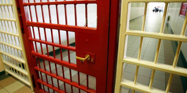 Une araignée bananière s'échappe à la prison d'Andenne - La Libre