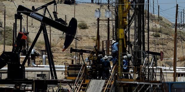 Explosition pétrolière au Nigeria: Chevron perd 35.000 barils par jour - La Libre