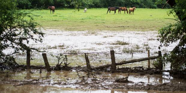 Importantes inondations à Virton et Saint-Hubert - La Libre
