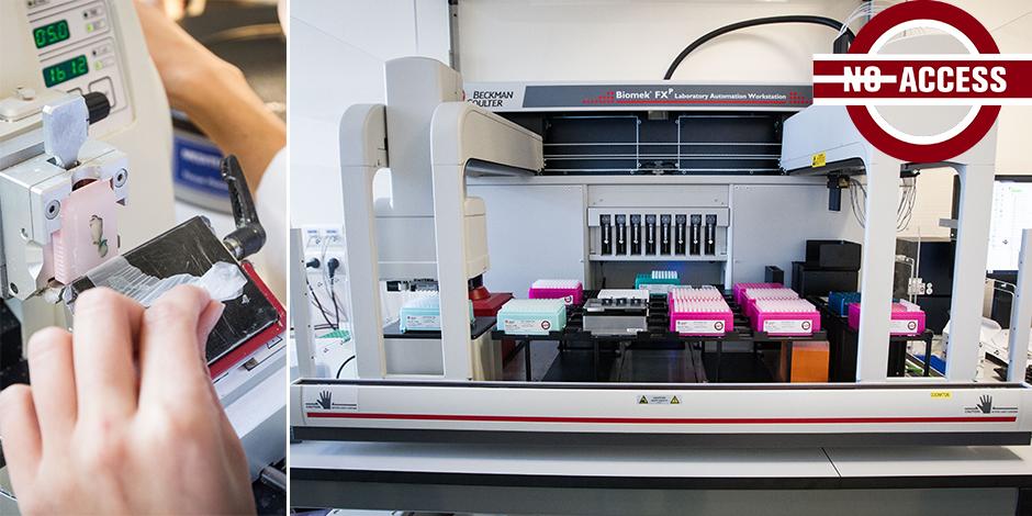 OncoDNA, la start-up wallonne qui révolutionne le diagnostic et le suivi des cancers