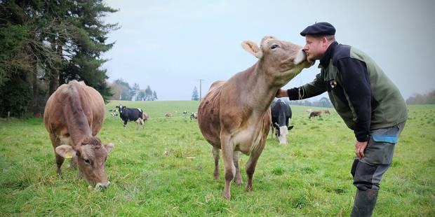 Roter moins pour polluer moins, la recette des vaches heureuses - La Libre