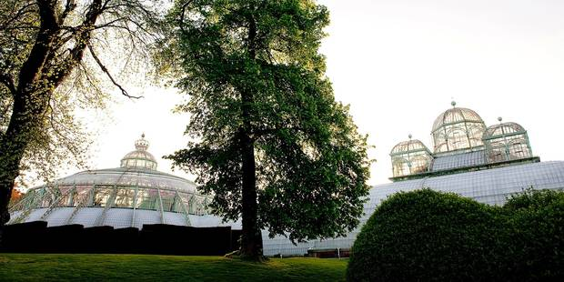 Le palais de Laeken chauffé grâce aux ordures - La Libre