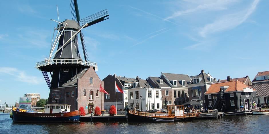 Connaissez-vous bien nos voisins néerlandais: voici vos témoignages