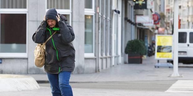 Rafales de vent de 100km/h ce mardi, les parcs de Bruxelles fermés dès midi - La Libre