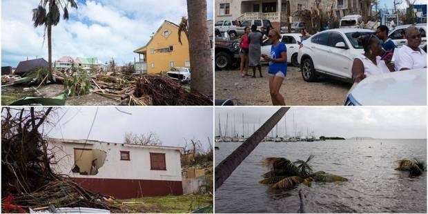 Irma: déjà 12 morts dans les Caraïbes et la Floride se prépare au pire - La Libre