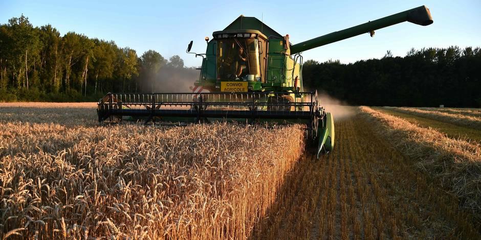 Edito: stop à l'agriculture chimique - La Libre