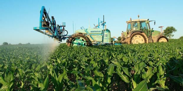 La Wallonie veut voir à quel point les pesticides nous touchent - La Libre