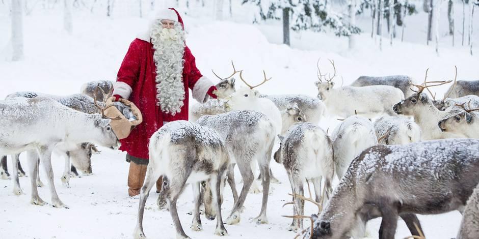 Nom Des Rennes Du Pere Noel Les rennes du Père Noël seraient des femelles: voici l'explication