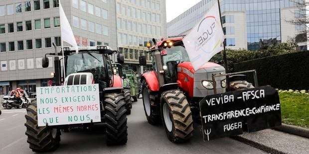 """Manifestation en tracteurs au rond-point Schuman: Veviba et Mercosur, """"même combat"""", estime la Fugea - La Libre"""
