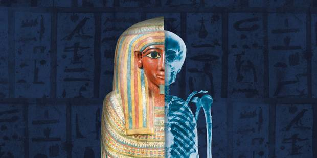 Neuf momies égyptiennes reprennent vie à Bruges - La Libre